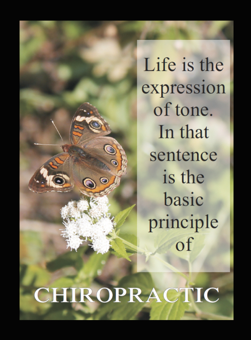 Expression of Tone Quote