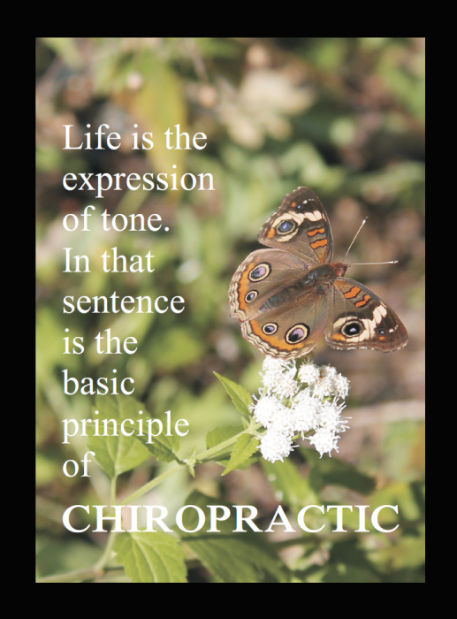 Principle of Chiropractic Quote