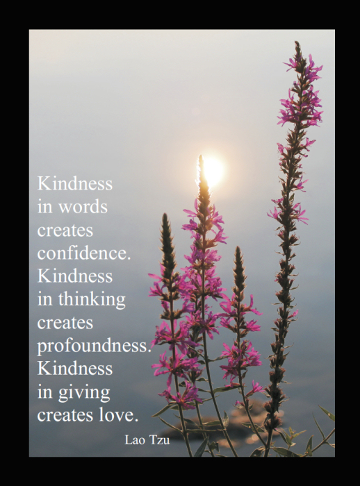 Kindness in Words Quote