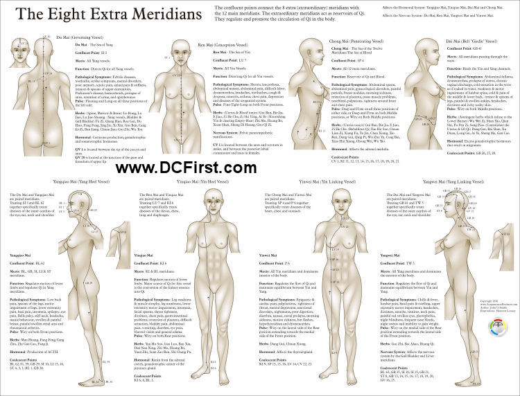 Eight Extraordinary Meridians Poster