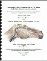 Leiserings Horse Anatomy Atlas