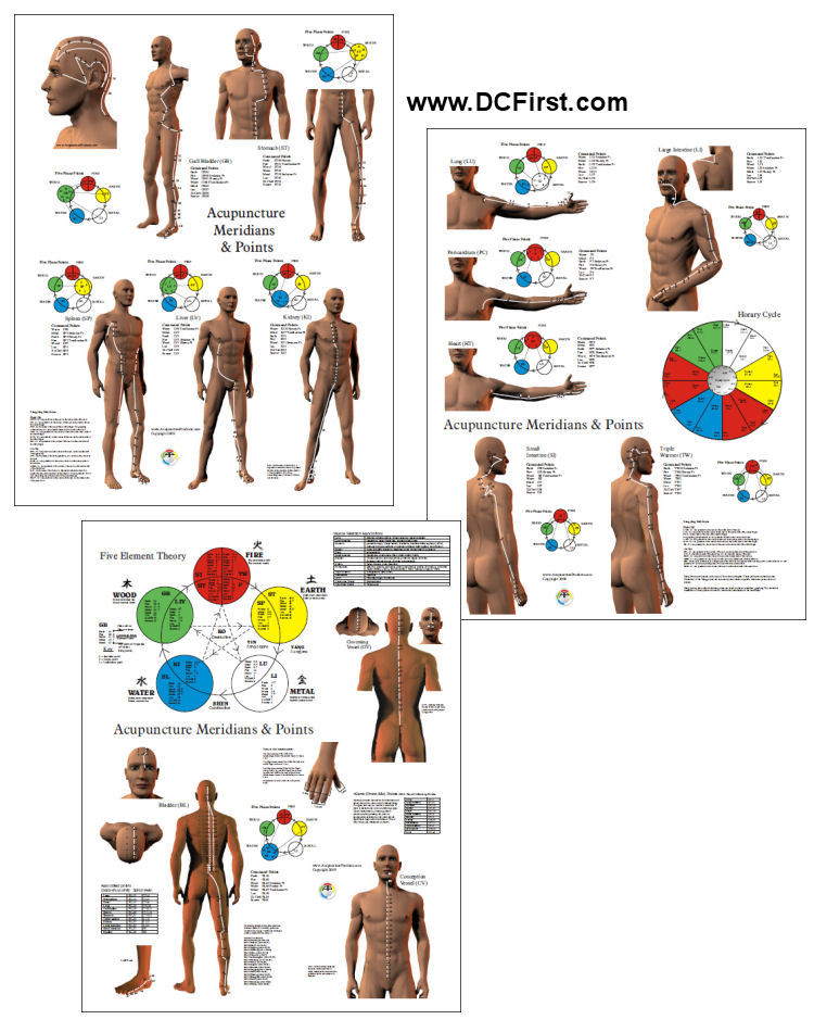Acupuncture Meridian Points