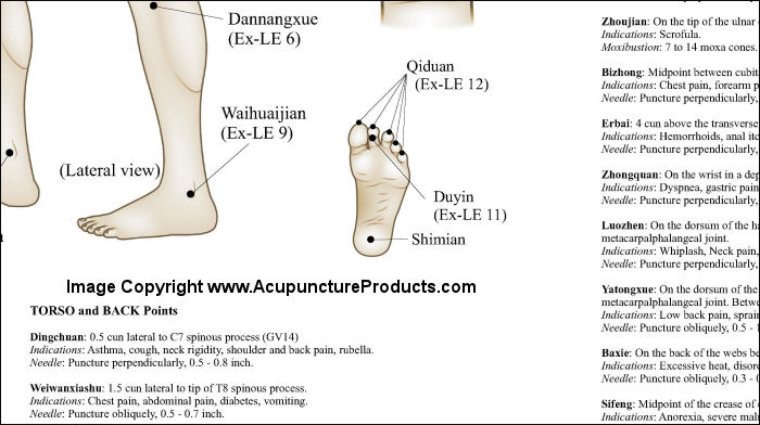 Extraordinary Acupuncture Points Poster